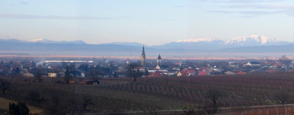 Panoramic view of gols in winter with no snow