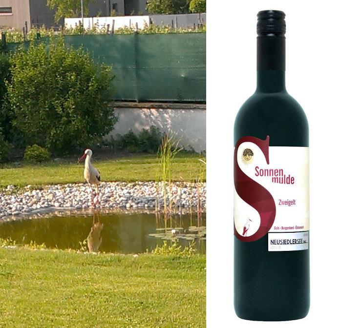 Two pictures, one of a stork at the pond, one of a bottle of wine.