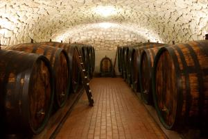 Our red wine cellar. Big wooden casks left and right, above them an arched ceiling made of stones